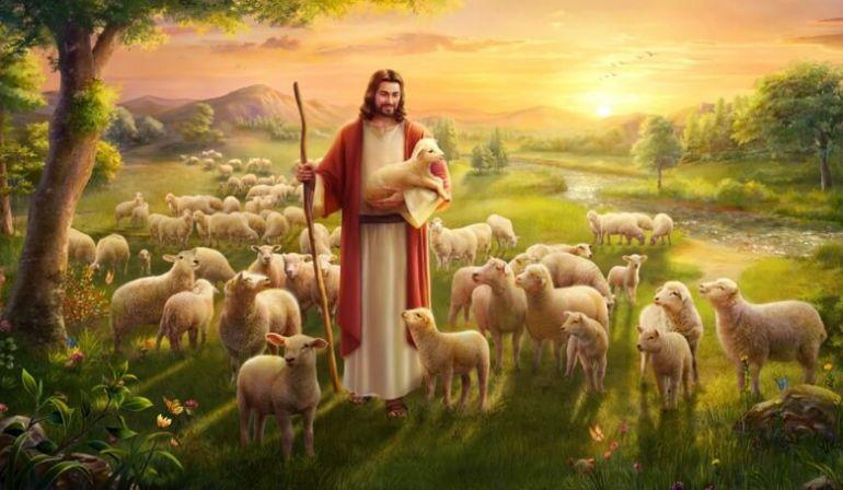 Ja dávam svojim ovciam večný život